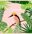 a tropical background vector image vector image