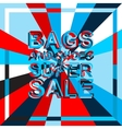 Big ice sale poster with BAGS AND SHOES SUPER SALE vector image vector image