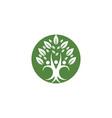 family tree symbol icon logo design vector image vector image