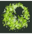 Green leaves round frame vector image vector image