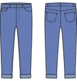 Jean breeches Front and back vector image vector image