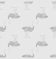 seamless pattern ostrich bird monochrome graphic vector image