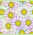 seamless pattern with spring camomile beauty vector image