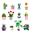 Set of green house plants in pots Leaf and vector image vector image
