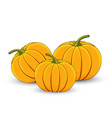several pumpkins on a white isolated background vector image vector image