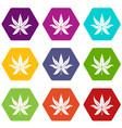 chestnut leaf icon set color hexahedron vector image vector image