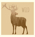 double exposition deer with forest panorama - wild vector image vector image