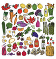 food set vegetables and fruits isolated objects vector image