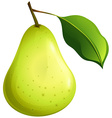 Green pear with leaf vector image