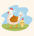 happy easter card with chicken family in camp vector image vector image