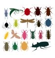 insect icon vector image vector image