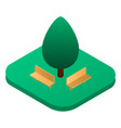 park bench near tree icon isometric style vector image vector image