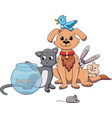 pet shop pets vector image