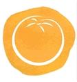 sketch orange vector image vector image