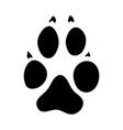 wolf footprint vector image vector image