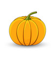 pumpkin on a white isolated background cartoon vector image