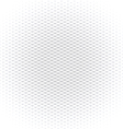 Abstract monochrome background does contain vector image vector image