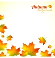 Autumn falling down foliage background vector image