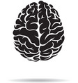 Brain icon On the white background vector image vector image