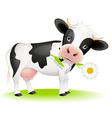 cow eating daisy vector image vector image