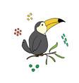 cute toucan cartoon animal baand children vector image