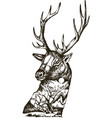 stylized deer head with nature landscape vector image vector image