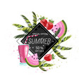 summer tropic fruits and drinks icon template vector image vector image