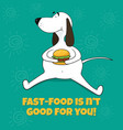 the fat dog eats fast food vector image vector image