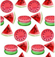watermelon macaroons pattern fresh and vector image vector image