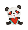 adorable panda holding red heart cute enamored vector image vector image