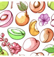 apricot fruit and flowers hand drawn vector image