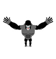 Cheerful gorilla spread his arms in an embrace vector image vector image