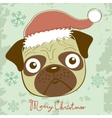 cute Christmas pug vector image vector image