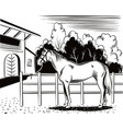 horse tied to the fence vector image vector image