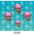 Set of spotted jellyfish with labeled vector image vector image