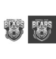 vintage aggressive bear head mascot logotype vector image vector image