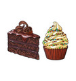 hand drawn desserts - cupcake and piece of layered vector image