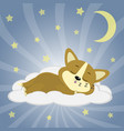 a cute corgi puppy is sleeping on a cloud in the vector image