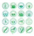 Aloe vera design elements Stamps collection vector image vector image