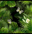 banner with tropical plants vector image vector image