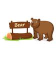 Cartoon zoo bear sign vector image vector image