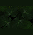 dark background with tropical leafs vector image