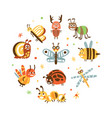 funny insects in circular shape banner template vector image vector image