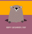 happy groundhog day with cute groundhog vector image vector image