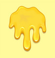 orange honey drop and yellow splashes healthy vector image vector image
