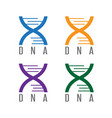 simple icon dna spiral design template vector image
