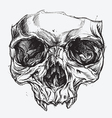 Skull Drawing vector image vector image