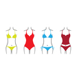 Swimsuit set vector image vector image