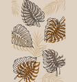 tropical leaves boho style modern jungle plants vector image