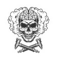 vintage skull with human brain vector image vector image